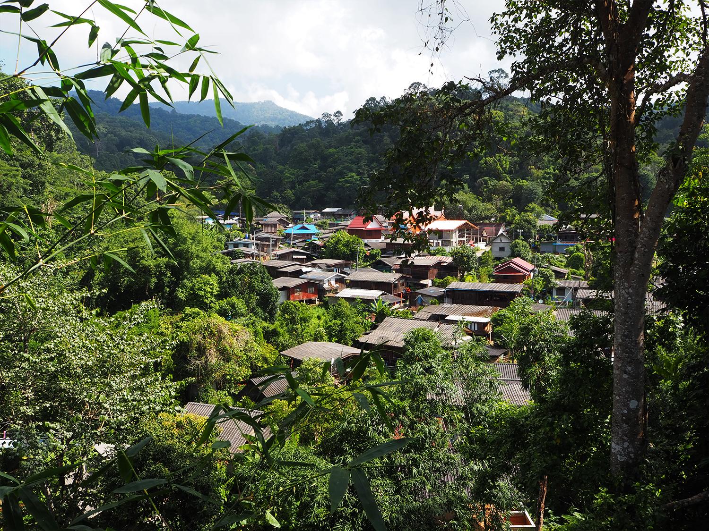 ประวัติชุมชนบ้านป่าเหมี้ยง