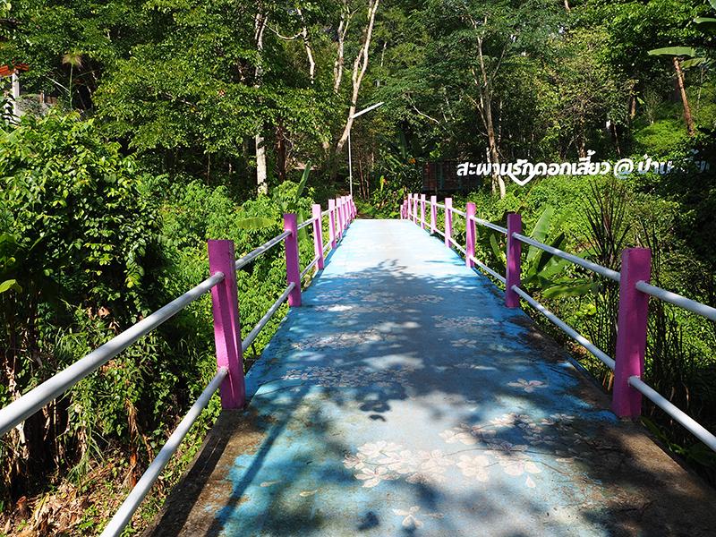 สะพานรักดอกเสี้ยว @ป่าเหมี้ยง